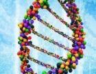 低本基因检测招代理