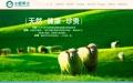 网站优化公司,双榆树做网站的公司,网络公司的电话