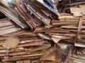 高价回收废纸废书报