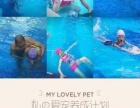 少儿暑假游泳培训班开课了