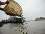 渔业污染评估 渔业损失评估
