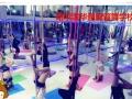 全国连锁 舞蹈培训 成人零基础教练速成