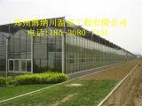 大同建一亩智能连栋温室那种材料性价比高,郑州博纳川厂家直销