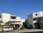 清溪镇近樟木头罗马标准一楼厂房480平方米出租