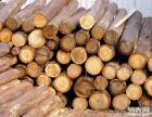 潮州专业的木材鉴定及木材权威检测鉴定