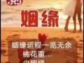 贵州贵阳专业八字预测 起名 六爻 择日 化煞解灾及风水调理