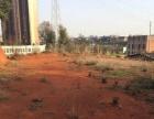 星沙黄兴大道旁边有厂房。土地。仓库优惠出租