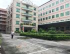 (出租) 带装修厂房出租800平 位于原房东龙岗嶂背