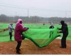 北京防尘盖土网 盖土网厂家 盖土网现货 盖土网价格