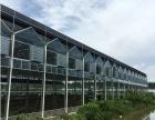 安徽天长阳光板材质温室大棚草莓采摘园式大棚生产厂家报价
