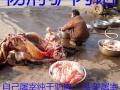 驴肉特色配方腌制排酸技术等祖传加盟 卤菜熟食