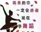 尚舞肚皮舞,瑜伽,古典舞,健身操