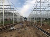 冬暖式蔬菜大棚就选叁圣农业技术服务|天津冬暖式蔬菜大棚