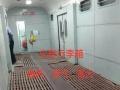 广州专业办理宠物托运~主营火车航空汽车