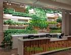 遵义绿墙 生态绿化装饰,仿真绿化装饰单位