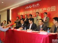 深圳龙岗头狼网站建设 网站推广 网站开发 网站运营 网络营销