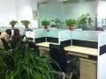 独立办公位环境舒适