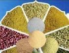 加工小麦粉、玉米粉、玉米椮、杂粮粉、麦仁