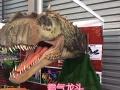 济宁站 大型动态恐龙 为这个城市这个项目添彩