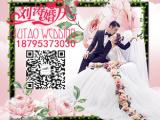 宁夏婚礼策划公司排行,刘涛婚庆放大爱,放大美好
