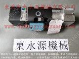 惠州冲床滑块锁紧泵,原装PB07 找东永源批发