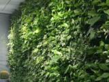 塑石假山庭院景观仿真绿植花墙高质环保材料