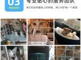 广州太原西安猫狗至全国宠物托运服务航空铁路专车大巴