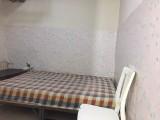 培黎广场 朝阳小区 1室 1厅 50平米 整租
