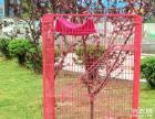 自家用的猫笼子转让