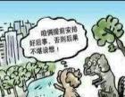合肥宠物树葬