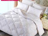 东莞棉被厂依你家纺批发定做柔暖被芯加厚保暖秋冬棉被单双人棉胎