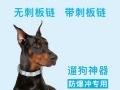狗项圈品牌 狗项圈排行榜 莫迪思宠物狗项圈批发