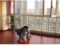家庭打扫 新房打扫 公司打扫 擦玻璃