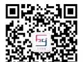 微信开发 网站建设