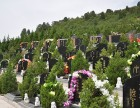 北京市昌平区公墓陵园价格怎么样?