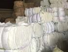广州大量供应纯棉破仔 纯棉精梳落棉等