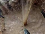家庭暗管漏水检测,埋地消防水管漏水检测精确定位漏水