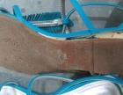 达芙妮凉鞋230码女式凉鞋低跟平跟夹趾