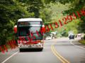 苏州到安阳的旅游汽车大巴.15262441562客车指南