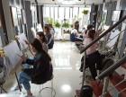 上海成人零起点学绘画 嘉定区哥艺画室成人零基础美术培训
