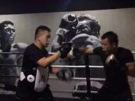 拳击散打 防身术 成年人培训 天津悍将搏击俱乐部