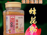 鲜蜂王浆 王浆冻干粉  蜂产品招商加盟 蜂花粉批发