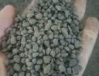 凉山轻质陶粒 //金瑞陶粒// 专业轻质陶粒