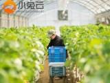 南宁小程序开发智慧农业小程序商城设计价格