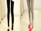 2014夏季新款女装 显瘦打底裤 骷髅头蕾丝莫代尔 九分裤 厂家批发