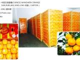 供应中国无核蜜橘,衢州蜜橘批发