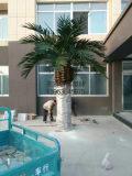 重庆仿真椰子树仿真海藻树仿真棕榈树专业制作厂家