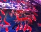 上海观赏鱼专卖 鱼缸定制