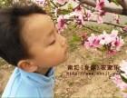 春季踏青 上海周边农家乐推荐 采草莓喂山羊 吃土菜钓大鱼