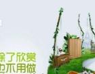 成都花草树园艺场 专业植物租赁 绿化养护 园林设计